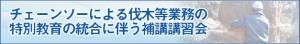 Midashi_chainsaw_hokou
